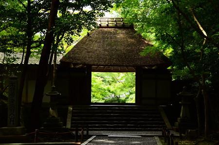 緑の法然院