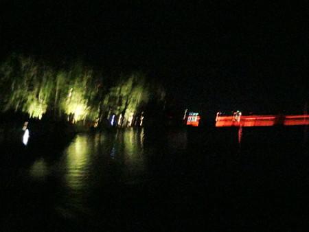 天橋立ライトアップ