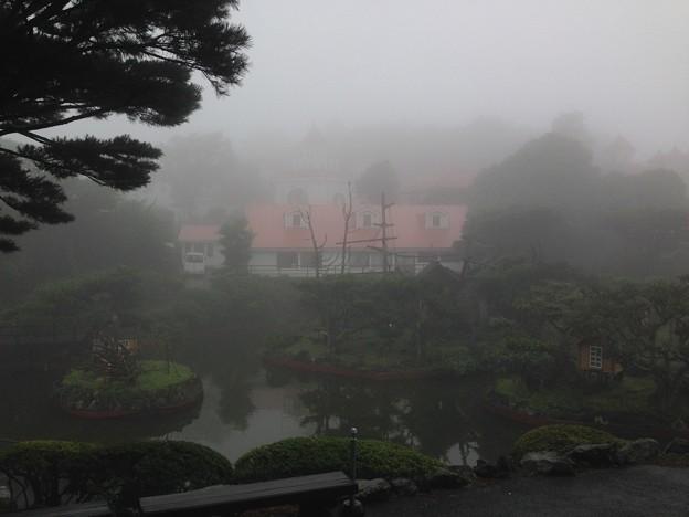 小雨と霧のシャボテン公園