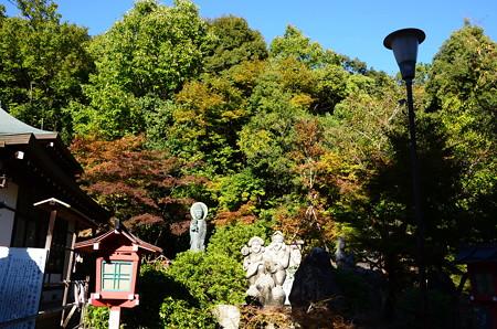 少し色づいた妙円寺