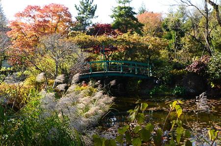 紅葉と薄のモネの池