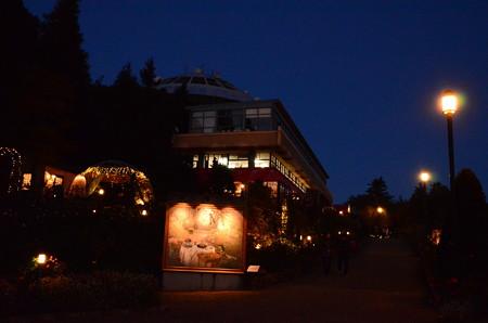 ガーデンミュージアム比叡の夜景