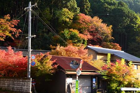 叡電鞍馬駅付近の秋景色
