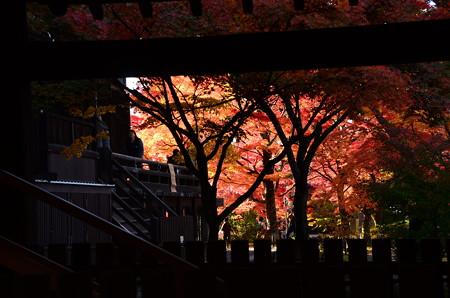 奥が燃える秋景色