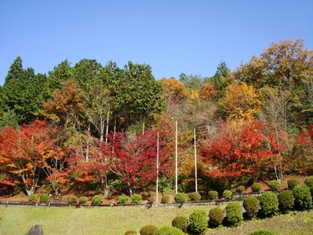 あうる京北の紅葉