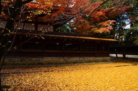 上御霊神社の秋景