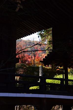 御影堂脇の紅葉景色