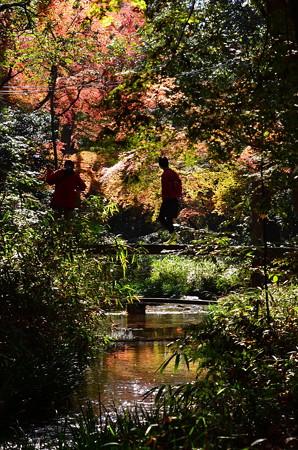 秋彩を映す泉川