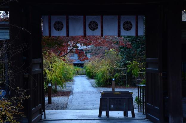 梨木神社秋景