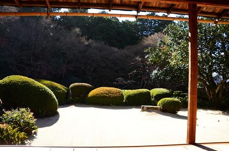初冬の詩仙堂庭園