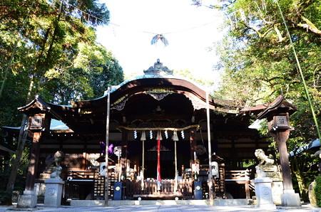 狛兎の神社