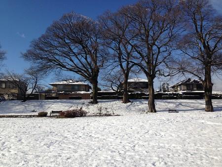雪と青空の賀茂川