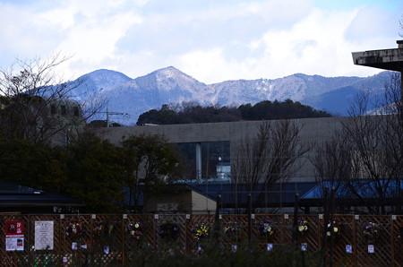 雪の残る水井山、横高山
