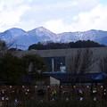 写真: 雪の残る水井山、横高山