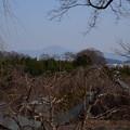 写真: 雪の残る比叡山
