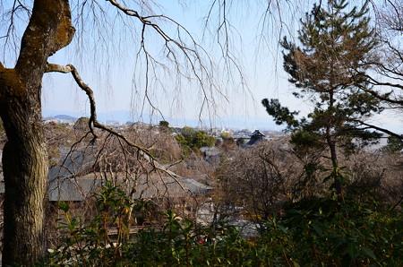 望京の丘からの眺望