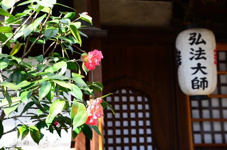椿の雨宝院