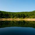 写真: 湖畔より