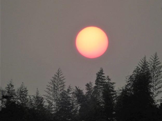 赤い朝陽(pm2.5の影響)_8826