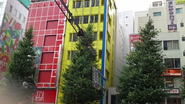 写真: ちなみに、この黄色いビルが青い有名店だった頃の店員でした。わかる...