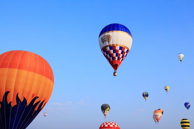 hot air balloon9