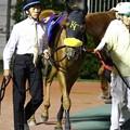 写真: ミスシナノ-120613-02-large