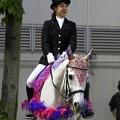 写真: 川崎競馬の誘導馬05月開催 藤Ver-120514-02-large