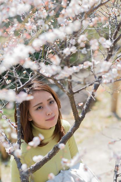 写真: 「やっと咲いたわよ。そっちでも見えてる?」