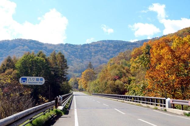 国道299号線・八ヶ嶺橋