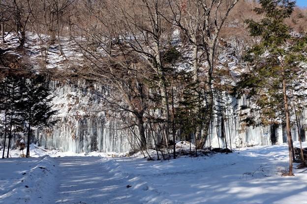 氷柱群散策路