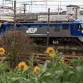 16京都鉄道博物館061