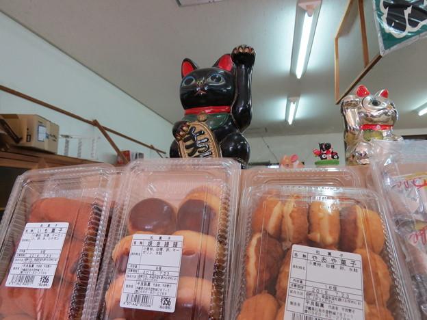 Photos: 仲松商店