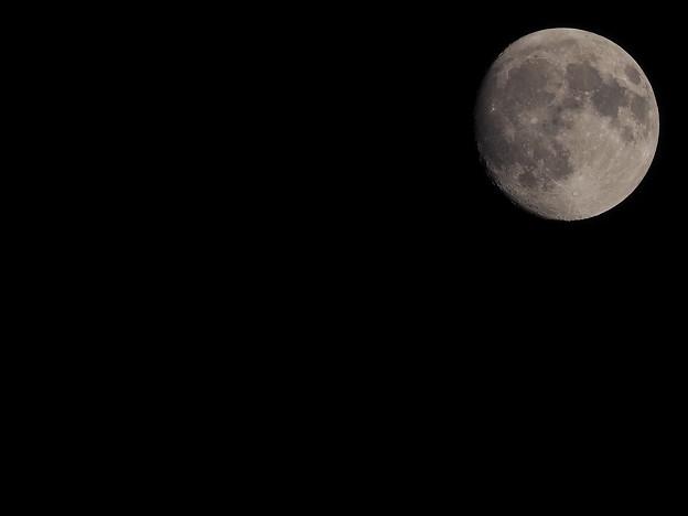 今夜のお月様