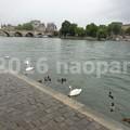 Photos: image057