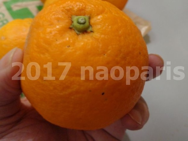写真: image021