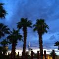 Mesquiteの夕暮れ
