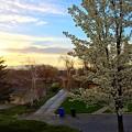 Photos: おばあちゃんの家から見える夕景♪