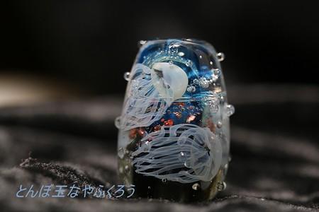 とんぼ玉 H28.10.10 2