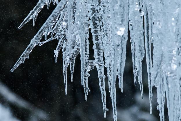 写真: 氷柱2