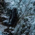 写真: 厳冬