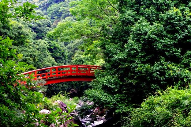 赤い橋(編集済みversion)