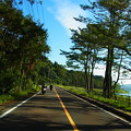 Photos: 池田湖畔