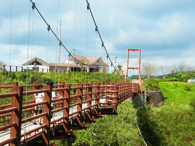 写真: 指宿スカイラインPAにて つり橋から桜島が見える
