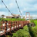 Photos: 指宿スカイラインPAにて つり橋から桜島が見える