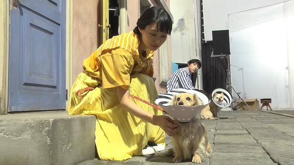 坂口健太郎×忽那汐里【メイキング】ニコアンド新CMが公開!