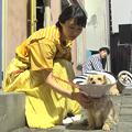 Photos: 坂口健太郎×忽那汐里【メイキング】ニコアンド新CMが公開!