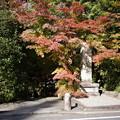 Photos: 円成寺入り口