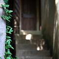 Photos: 『昭和への階段。。。』