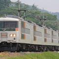 185系200番台オオB6編成 快速足利藤まつり3号
