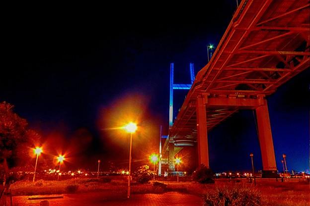 写真: 大黒埠頭の夜景